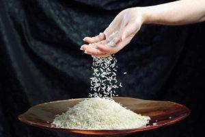 волшебный рис